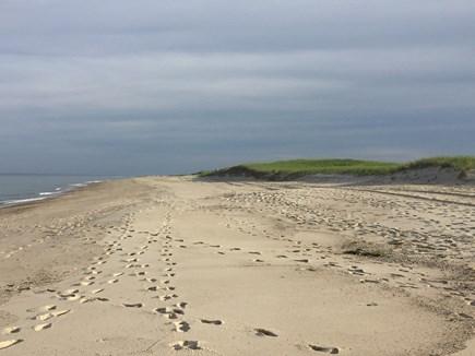 Eastham Cape Cod vacation rental - National Seashore