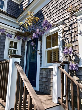 Provincetown Cape Cod vacation rental - Wisteria-draped Entrance