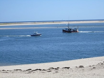 Chatham Cape Cod vacation rental - Chatham's Lighthouse beach. It's 2.5 miles from the cottage.