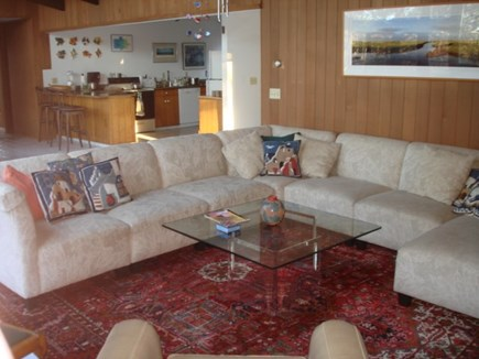 Wellfleet Cape Cod vacation rental - Great summer conversations in the Living room