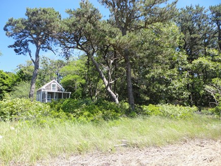 Wellfleet Cape Cod vacation rental - Cottage peeking out overlooking tidal waters directly in front