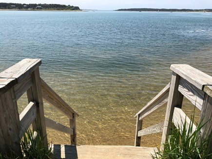 Wellfleet Cape Cod vacation rental - Taking a dip at Pleasant Point Landing at high or mid tide