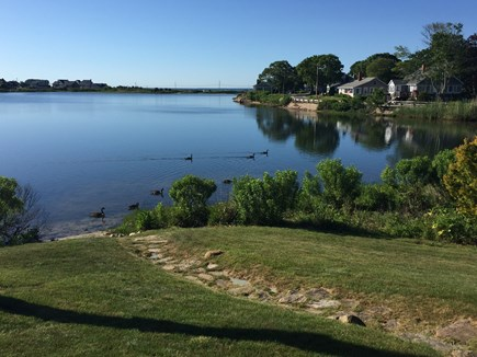 Falmouth Heights Cape Cod vacation rental - Pond view from Deck steps down to waterfront for Kayaking, canoe
