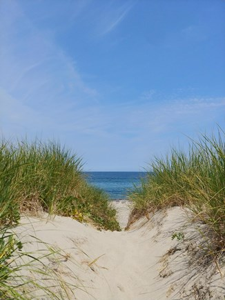 East Sandwich Cape Cod vacation rental - Just a Walk to the Dunes!