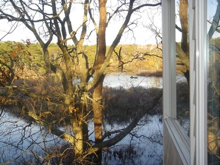 Eastham Cape Cod vacation rental - Views of Minister's Pond from the cottage