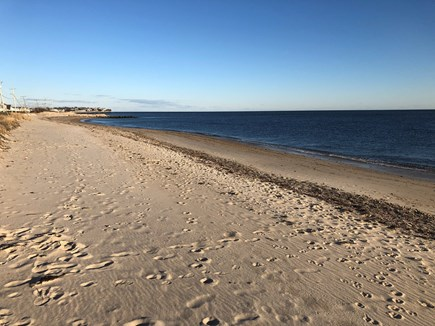 Falmouth Cape Cod vacation rental - Surf Drive Beach just steps away (looking east)...
