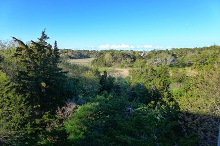 Orleans Cape Cod vacation rental - View from your master bedroom