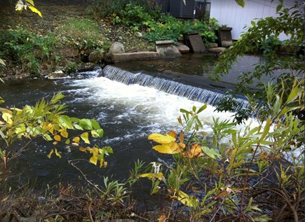 Plymouth Cultural District MA vacation rental - Brook waterfall in backyard! Private boardwalk, pond, courtyard!