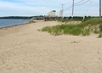 Falmouth Cape Cod vacation rental - Beautiful Surf Drive Beach is just down the road