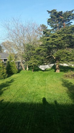 Harwichport, Red River Beach Cape Cod vacation rental - Back yard