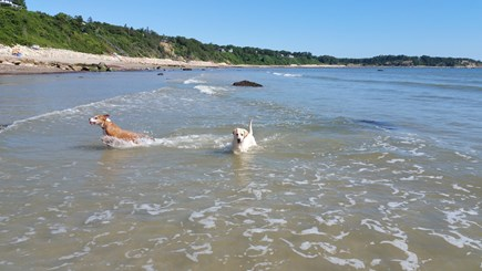 Plymouth MA vacation rental - Beach and friends