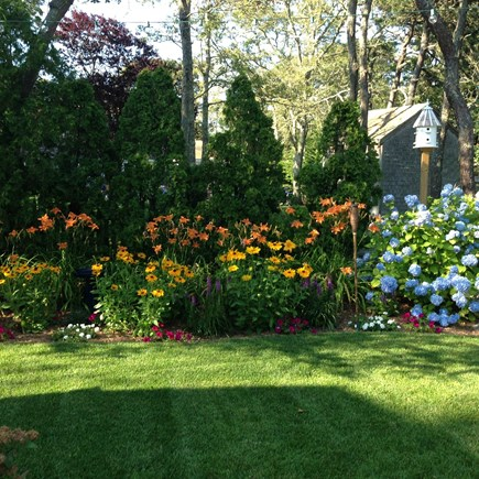Chatham Cape Cod vacation rental - Beautiful landscaping.