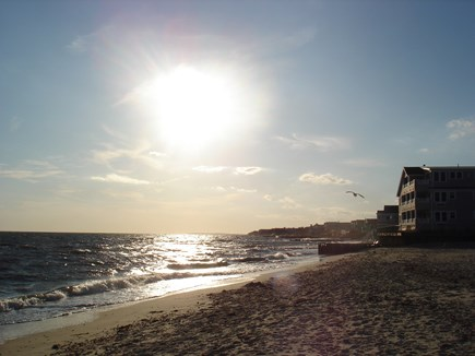 Dennis Port Cape Cod vacation rental - Private Nantucket sound beach within steps of cottage.