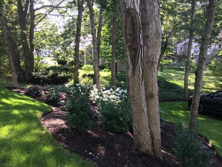 Osterville Osterville vacation rental - Side yard