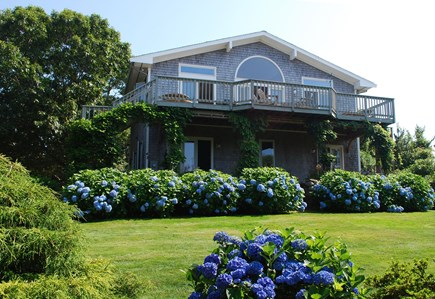 Falmouth, Sippewissett Cape Cod vacation rental - Wisteria draped house rimmed with hydrangeas