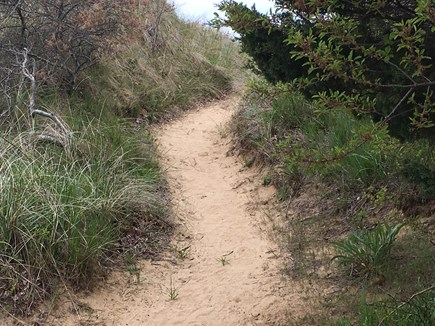 Eastham  Cape Cod vacation rental - Path leading to private beach