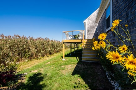 Orleans Cape Cod vacation rental - Beautiful brand new deck completed in 2019