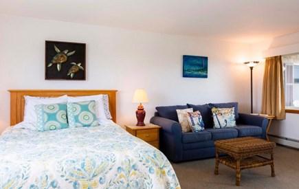 North Truro Cape Cod vacation rental - Sleeper sofa in living area.