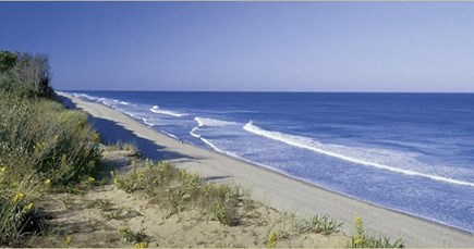 Eastham Cape Cod vacation rental - Nauset Beach - Ocean side - just 1.5 mis away