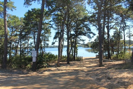 Eastham Cape Cod vacation rental - Wiley Park - Freshwater swimming