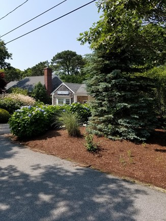 South Chatham Cape Cod vacation rental - On a quiet street