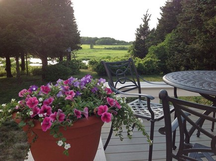 Eastham Cape Cod vacation rental - Marsh view