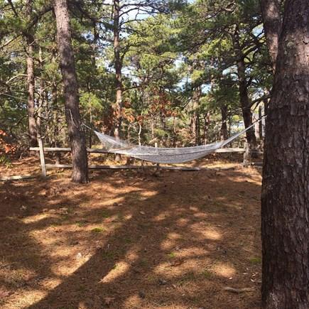 Wellfleet Cape Cod vacation rental - Back yard with hammock