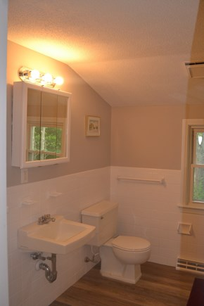 Centerville Centerville vacation rental - 2nd level bathroom with shower facing toilet.