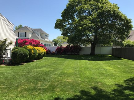 Falmouth Heights Cape Cod vacation rental - Large Yard