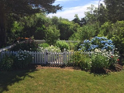 East Orleans Cape Cod vacation rental - Garden