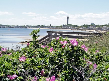 Provincetown,  East End Cape Cod vacation rental - Enjoy the many Provincetown beach walks & beautiful views!