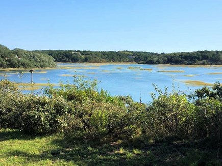 Truro Cape Cod vacation rental - Gorgeous water view--high tide on the Pamet