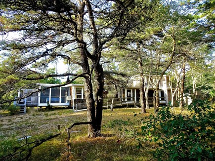 Truro Cape Cod vacation rental - Back of Home and partial View of Yard