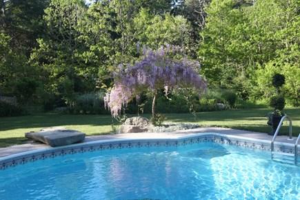 Marstons Mills, Near Osterville Marstons Mills vacation rental - Heated pool