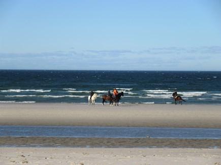 Dennis Cape Cod vacation rental - Beautiful sights at Bayview Beach