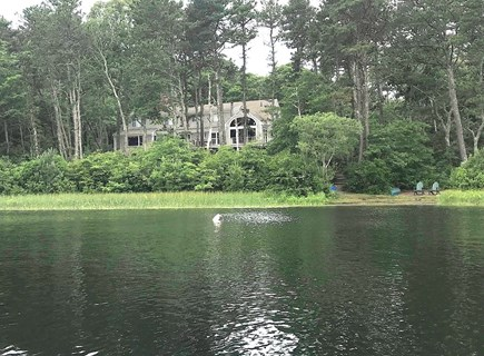 Orleans Cape Cod vacation rental - View of the house from the water