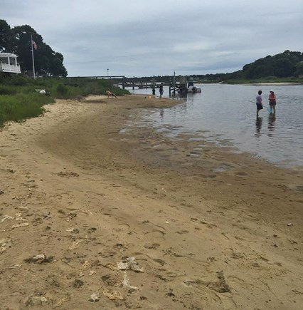 Falmouth Cape Cod vacation rental - Short walk to Association Beach on Great Pond