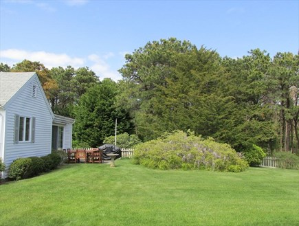 East Orleans Cape Cod vacation rental - Back yard
