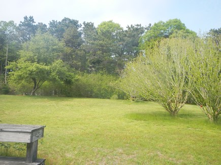 Dennis Cape Cod vacation rental - Looking out to the backyard in the spring