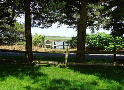 South Yarmouth Cape Cod vacation rental - OH Front Yard toward River  569