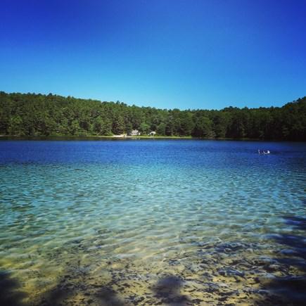 Wellfleet Cape Cod vacation rental - Duck Pond (no filter!)