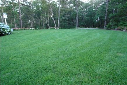 Brewster Cape Cod vacation rental - Soccer anyone? Large front lawn with basketball hoop