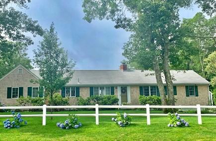 Harwich Cape Cod vacation rental - Adorable Cape house with quintessential cedar siding.