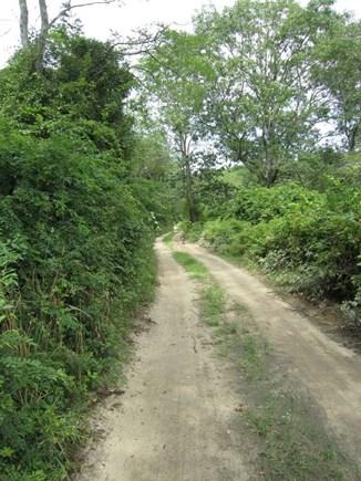 Wellfleet Cape Cod vacation rental - Pathway.