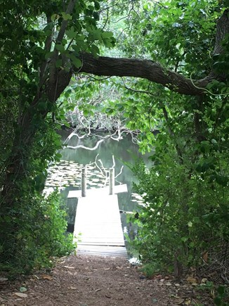Eastham Cape Cod vacation rental - Peace, beauty and tranquility at the Wellfleet Audubon.