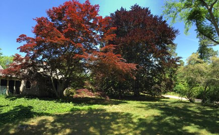 Brewster Cape Cod vacation rental - The cottage from the road. 150 yards down that road is the beach!