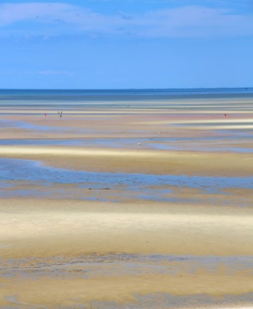 Brewster Cape Cod vacation rental - When the tide goes out, you can explore the Brewster Flats.