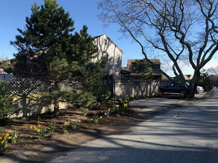 Provincetown Cape Cod vacation rental - Exterior view from the street,fence has been replaced with hedges