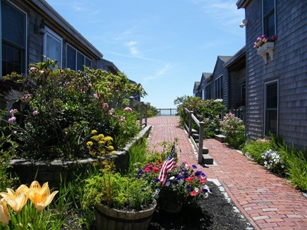 West Yarmouth Cape Cod vacation rental - Lovely Cape Cod landscaping.