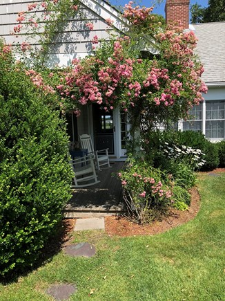 West Dennis Cape Cod vacation rental - Entering the front porch while the climbing roses are in bloom...